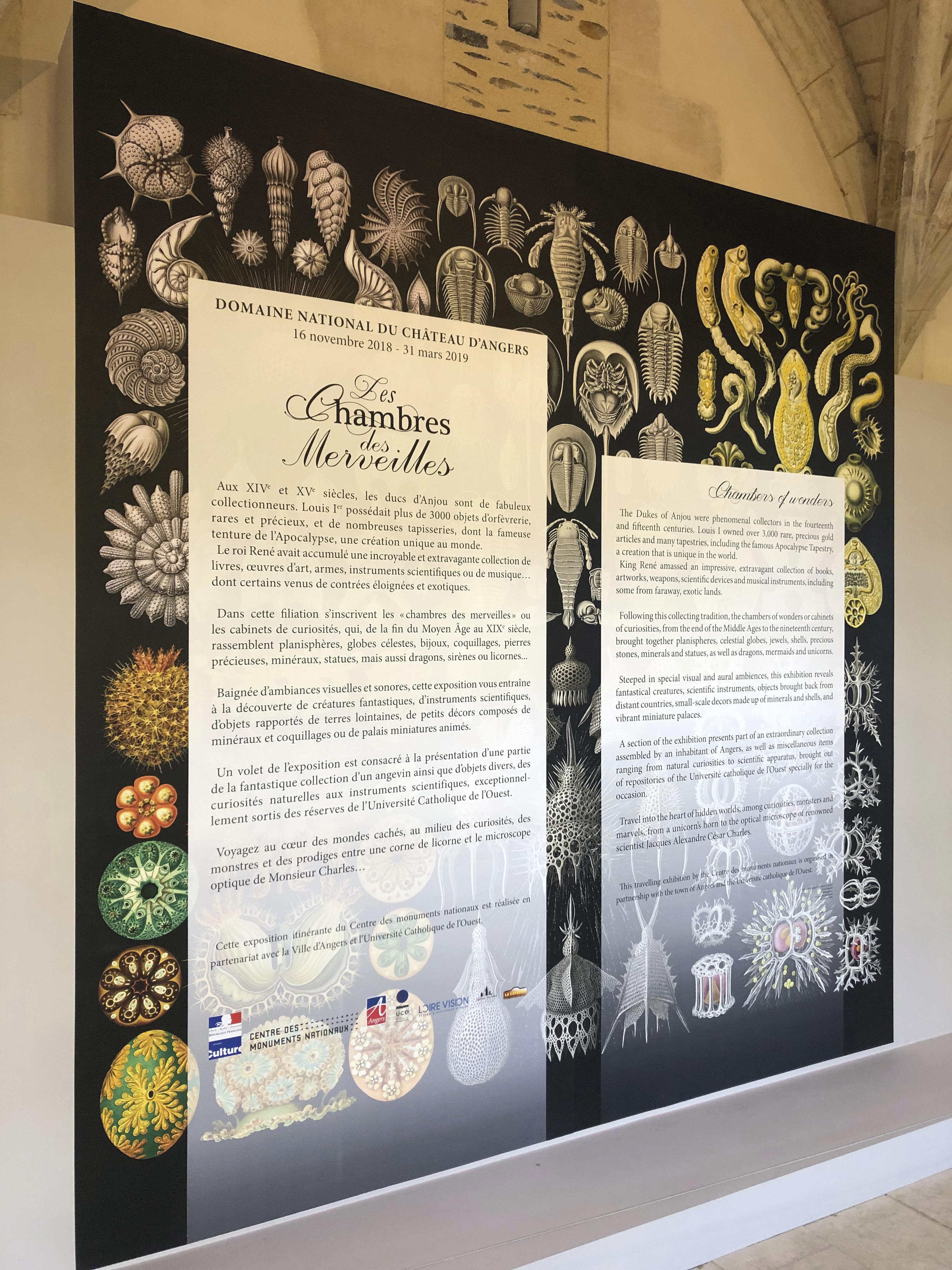 Tapisserie pour l'exposition Les chambres des merveilles au Château d'angers
